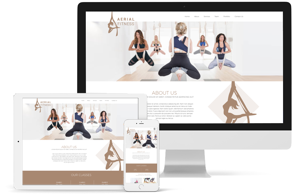 Aerial Fitness Website Design